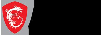 logo-msi.png